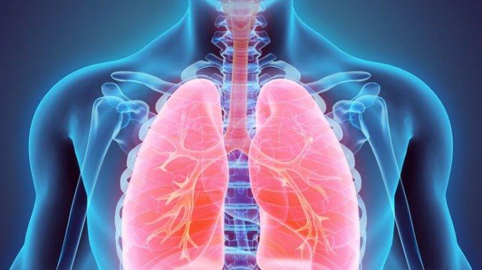 Tips Bersihkan Paru-paru Bagi Perokok Pasif